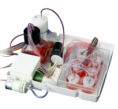 3D Perfusion Unit