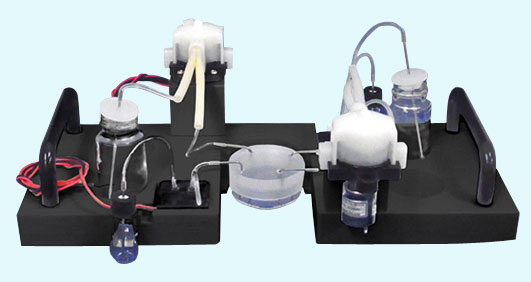 Live Cell Imaging Fluidic System